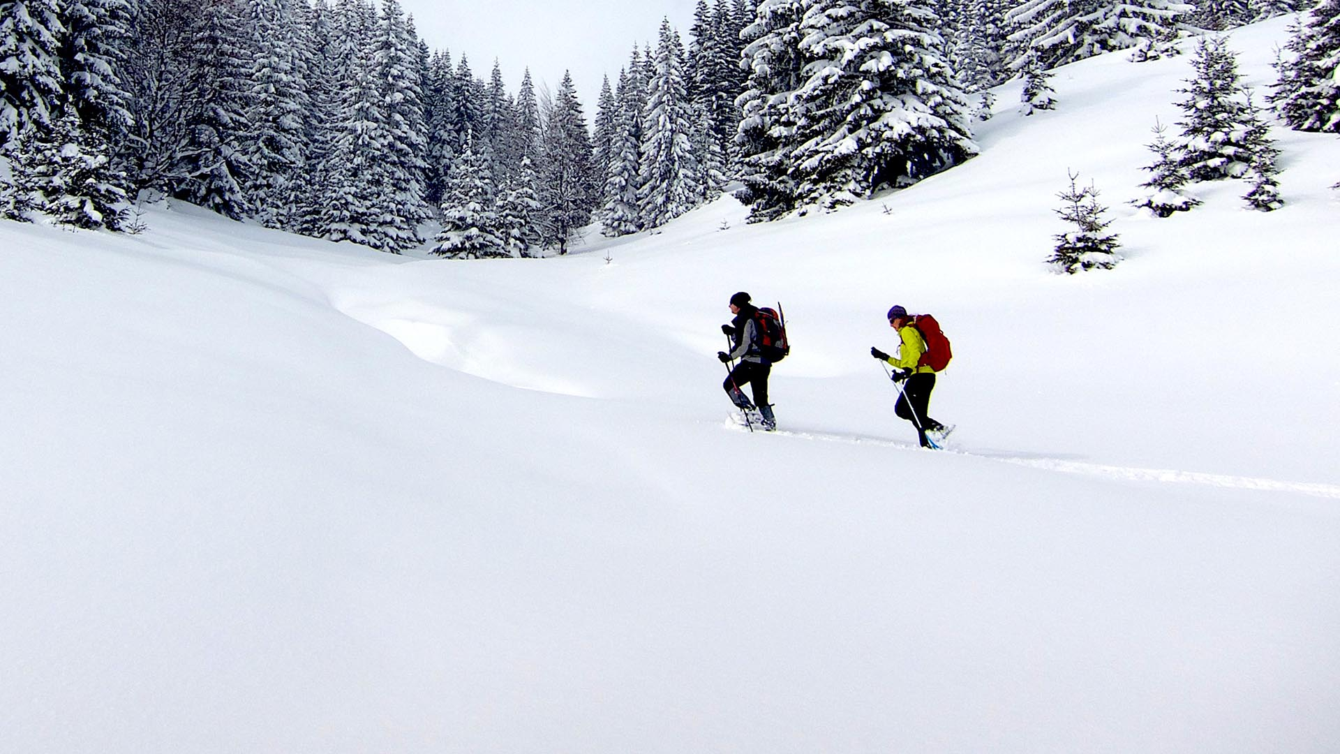 snowshoeing albania montenegro balkans