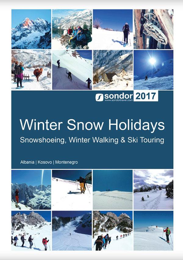 winter snow holiday brochure