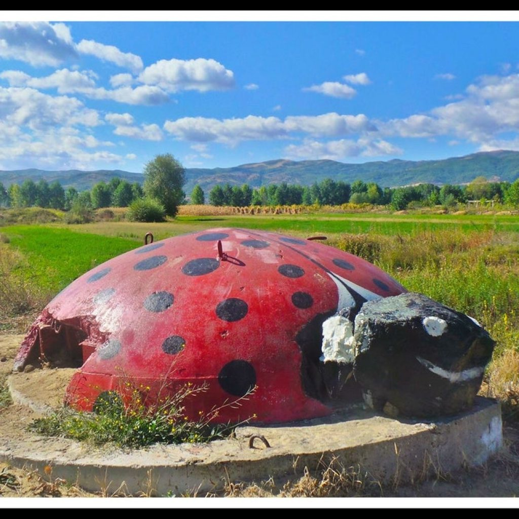 Ladybug bunker