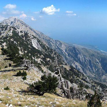 Mount Cika