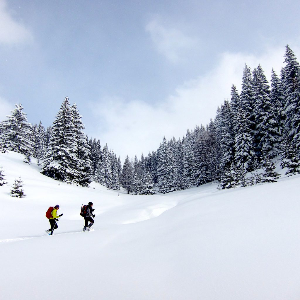 snowshoeing the Alps